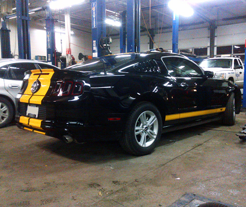 Yellow on Black Mustang
